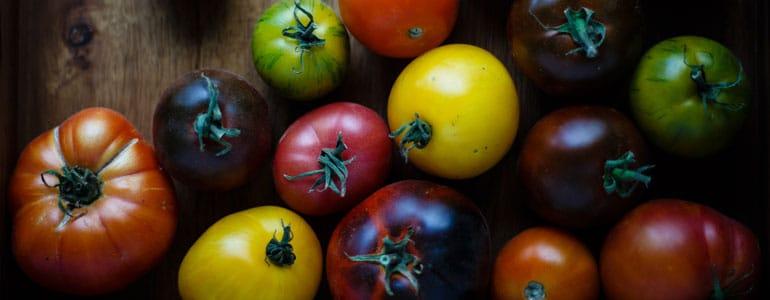 michel-rouxel-dieteticienne-94-recette-salade-tomates